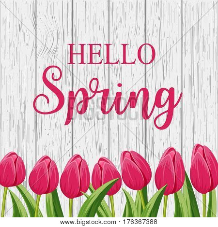 Hello spring banner with pink blooming tulip flower on wooden background vector illustration. Floral decorated spring design for holiday, seasonal romantic celebration, nature feast congratulation