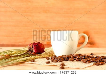 The Hot Coffee In The White Cup On Wooden Table With Coffee Beans Seed