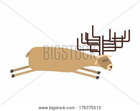 Sleeping Deer.  Wild Animal Sleeps. Sleepy Moose