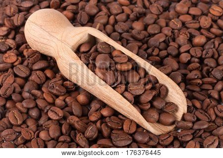 Coffee beans in a wooden scoop close-up as a background.