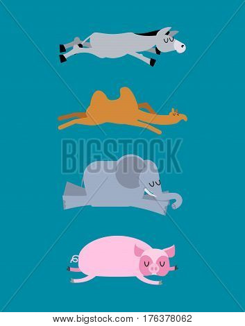 Sleeping Animals Set 4. Donkey And Elephant. Camel And Pig. Wild Animal Sleeps. Sleepy Beast