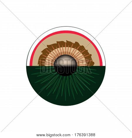 Anatomical structure of the pupil of the eye. Infographics. Vector illustration on isolated background.