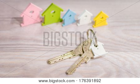 Silver Keychain laying on wooden Surface in front of miniature symbol of various coloured houses staying in line.