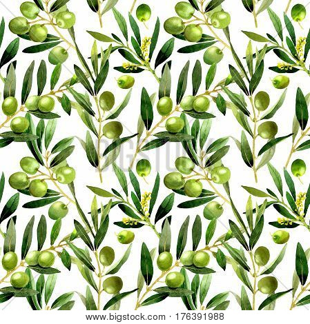 Olive tree pattern in a watercolor style isolated. Full name of the plant: Branches of an olive tree. Aquarelle olive tree for background, texture, wrapper pattern, frame or border.
