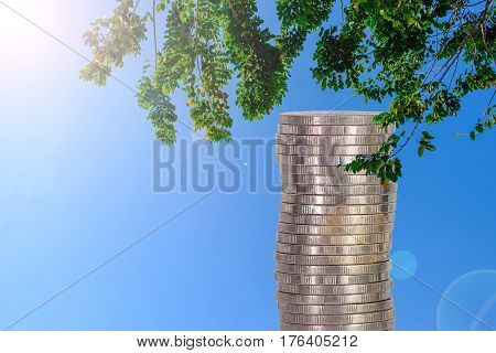 Columns Of Coins, Piles Of Coins Arranged As A Graph On Blue Sky And Tree Background
