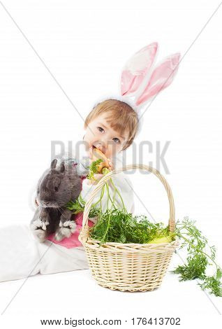 Baby in Easter bunny costume eating fresh carrot kid girl holding hare rabbit, isolated over white background