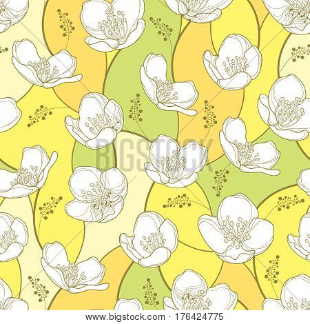 Vector seamless pattern with outline white Jasmine flowers on the pastel background. Elegance floral background with jasmin in contour style for spring design.