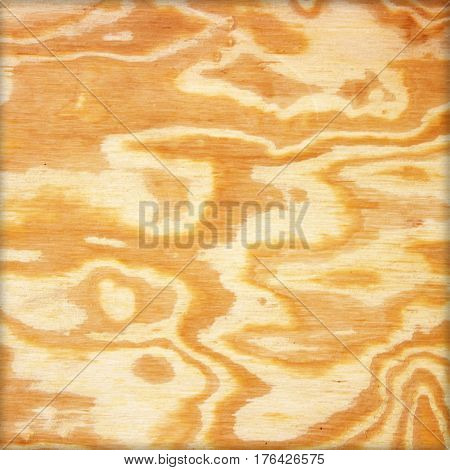 The Wood background or texture . ply wood