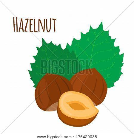 Hazelnut in flat cartoon style. Forest natural nut, organic ripe hazel, green leaves.