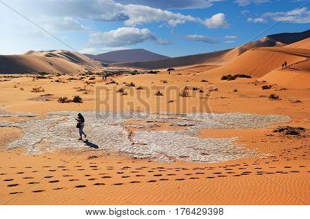 Tourists walking on the scenic dunes of Sossusvlei Namib desert Namib Naukluft National Park Namibia. Morning light. Adventure and exploration in Africa