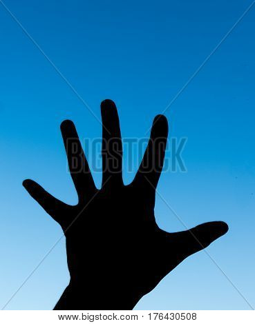 Palm Hand Hi Five Hi5 Five 5 Fingers in Blue Sky Background