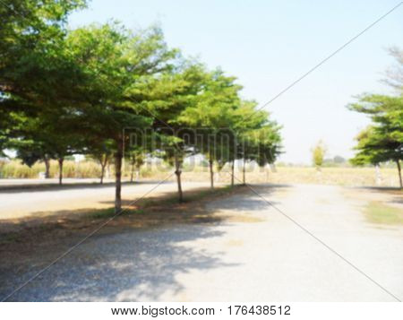 Blurred photo of empty car parking lot area with trees,Blurred photo can be background.
