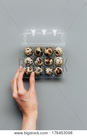 Female Taking Quail Eggs from Plastic Egg Box