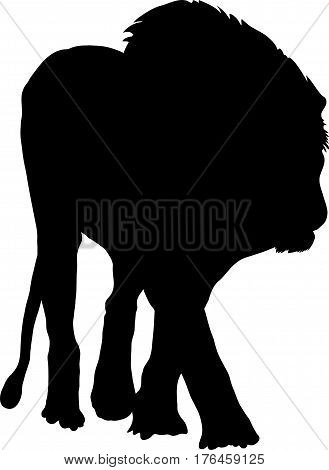 Silhouette of a hungry lion - digitally hand drawn vector illustration