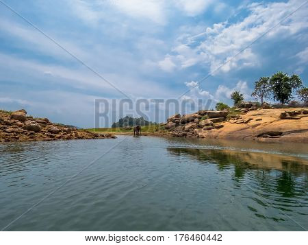 Beautiful Island Landscape of lake riverbed and an elephant in a National Park in Sri Lanka