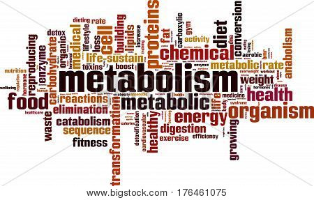 Metabolism word cloud concept. Vector illustration on white
