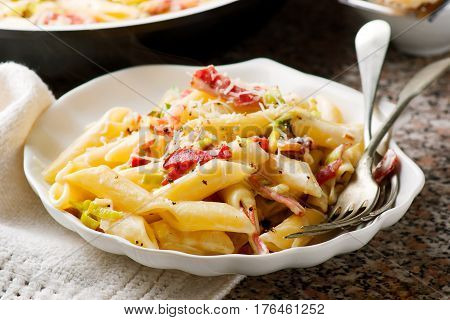 Penne with Leeks and Speck.s elective focus