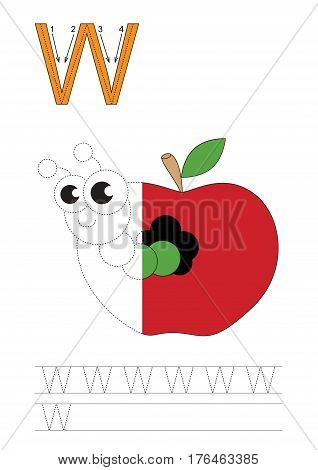 Vector exercise illustrated alphabet, kid gaming and education. Learn handwriting. Half trace game. Easy educational kid game. Tracing worksheet for letter W. Apple worm.
