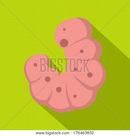 Maggot worm icon. Flat illustration of maggot worm vector icon for web isolated on lime background