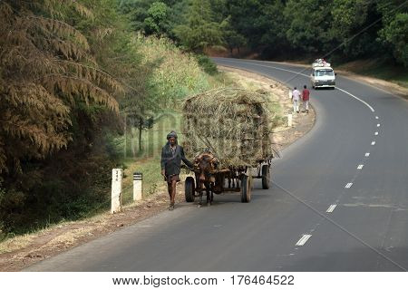 Transport by horse-drawn carriage in Ethiopia, 02. November 2012