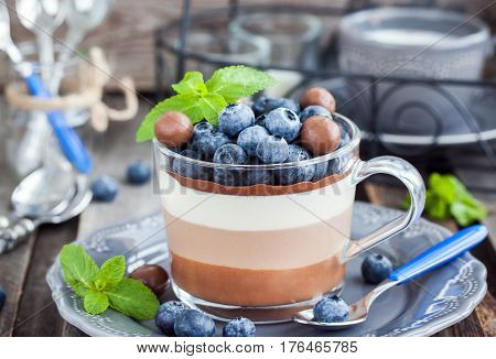Delicious three layered chocolate mousse dessert decorated with fresh blueberry mint and candies served in glass cup