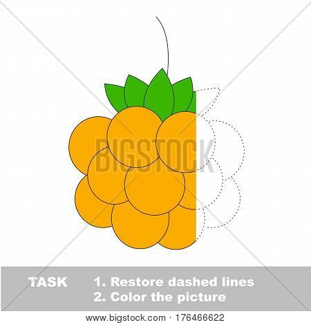 Cloudberry in vector to be traced. Restore dashed line and color the picture. Easy educational kid gaming with simple level of difficulty.