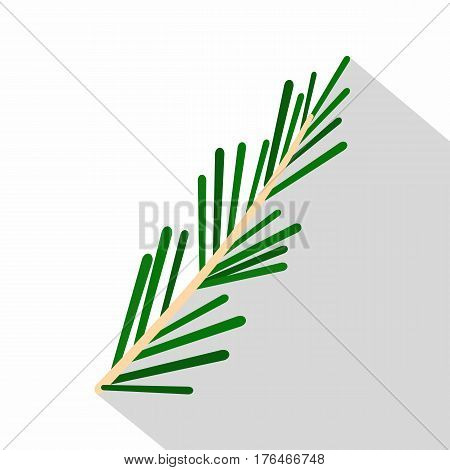 Green rosemary twig icon. Flat illustration of green rosemary twig vector icon for web isolated on white background