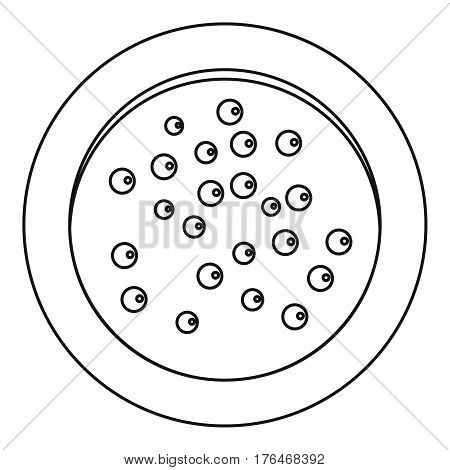 Heap of pepper peppercorns on a plate icon. Outline illustration of heap of pepper peppercorns on a plate vector icon for web