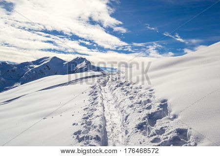 tracks of cross country skiers, italian Alps