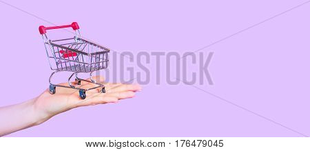 shopping cart on hand on a purple background