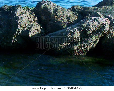 Las rocas que siempre forman parte de mi vida