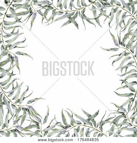 Watercolor eucalyptus border. Hand painted floral illustration with eucalyptus branch isolated on white background for design