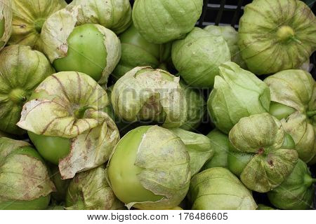 Closeup of Fresh Picked Tomatillos at the Farmers' Market