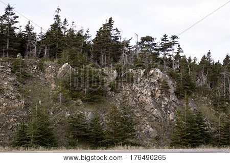 A rocky cliff with fir trees on top along the road in Cape Breton Highlands National Park, Nova Scotia on a beautiful bright cloud filled sunny day in September.