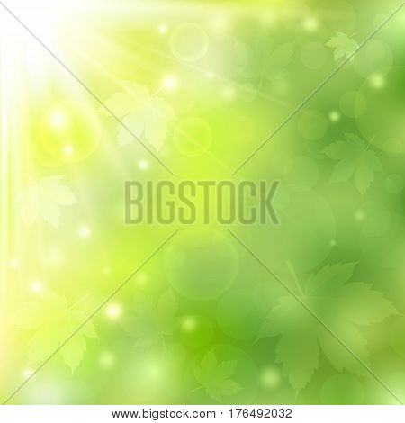 Spring or summer sunny natural green background with bokeh lights and maple leaves. Blurred soft backdrop. Vector illustration. EPS10
