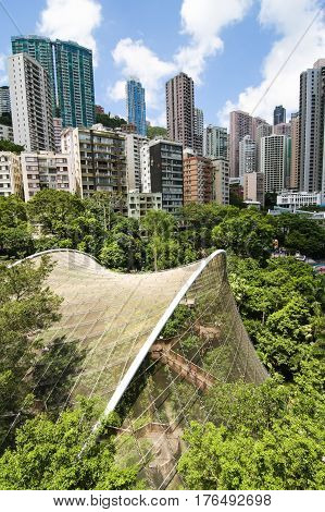 Aerial view over hong kong park and aviary