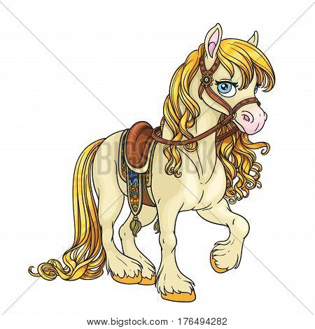 Cute Horse With Golden Mane Harnessed To A Saddle Isolated On Wh