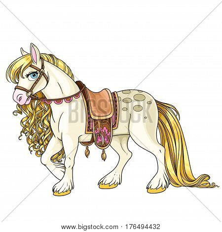 Cute White Horse With Golden Mane Harnessed To A Saddle Isolated