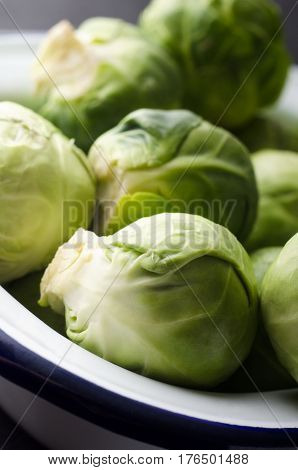 Brussel Sprouts In White Enamel Baking Tin