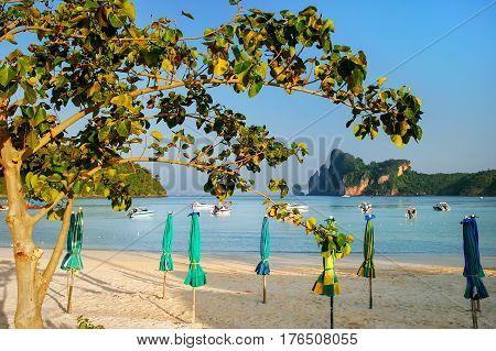 Ao Loh Dalum Beach With Sun Umbrellas On Phi Phi Don Island, Krabi Province, Thailand