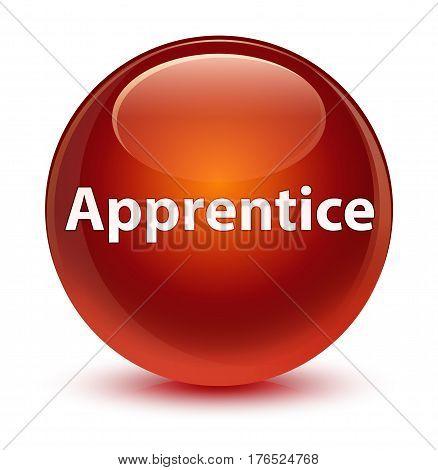 Apprentice Glassy Brown Round Button