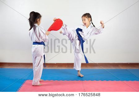 Two little girls demonstrate martial arts working together. Fighting position active lifestyle expressing emotions