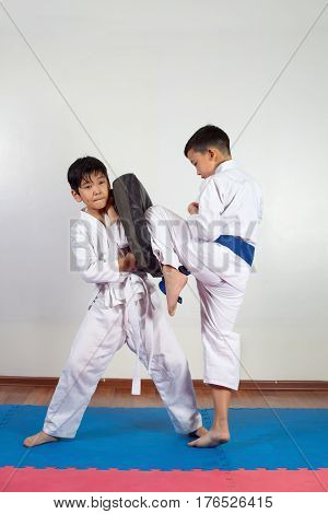 Two boys demonstrate martial arts working together. Fighting position active lifestyle expressing emotions