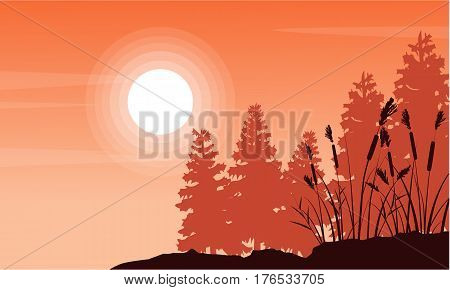 Silhouette of coarse grass and spruce landscape vector art