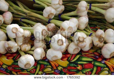 Garlic 2