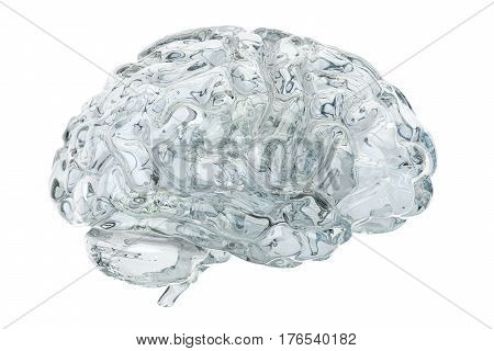 Glass transparent brain 3D rendering isolated on white background