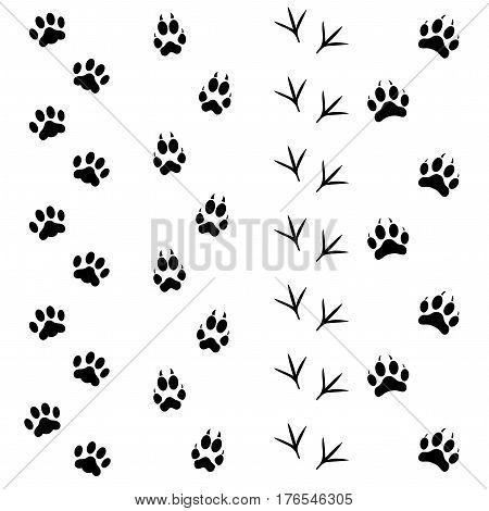 Black Different Animal and Bird Silhouettes Tracks Set Style Design Element Web . Vector illustration