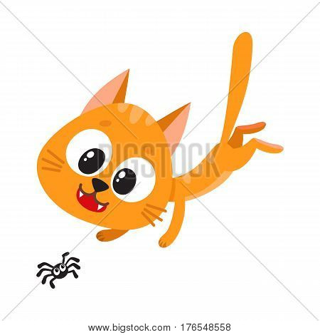 Cute and funny red cat character chasing, hunting, playing with little spider, cartoon vector illustration isolated on white background. Cute and funny red cat character playing with little spider