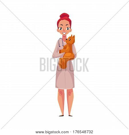 Young woman, female veterinarian doctor, vet in white medical coat holding fluffy cat, cartoon vector illustration isolated on white background. Female, woman veterinarian doctor, vet holding a cat