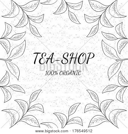 Green tea shop leaf illustration branch organic hand drawing sketch square banner template for packing cosmetics packaging branding etc